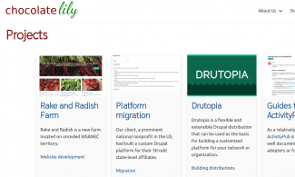 Screenshot of Chocolate Lily Web Projects website